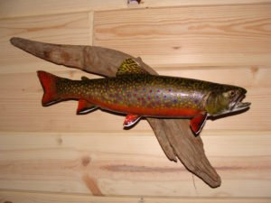 Brook Trout - Lundgren's Taxidermy