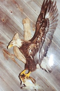 Bald Eagle - Lundgren's Taxidermy